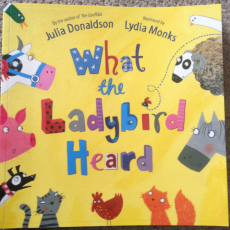What The Ladybird Heard – StoryTime