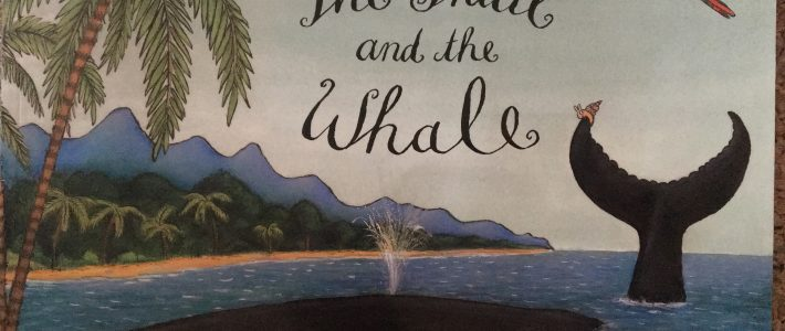 The Snail & The Whale